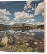 Rannoch Moor Wood Print