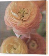 Ranunculus - 6296 Wood Print