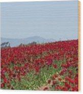 Ranunculus Red Wood Print