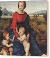 Raphael Madonna Of Belvedere  Madonna Del Prato  Wood Print