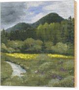 Rapid Creek Wood Print