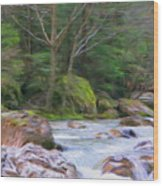 Rapids At The Rivers Bend Wood Print