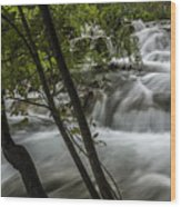 Rapids In Forest  Wood Print