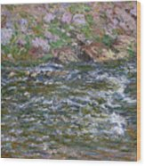 Rapids On The Petite Creuse At Fresselines, 1889 Wood Print