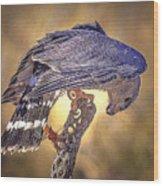 Raptor 22 Wood Print
