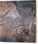 Raptor 28 Wood Print
