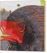 Raptor Head Wood Print