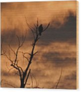 Raptor Silhouette  Wood Print