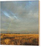 rare Morning Rainbow Wood Print
