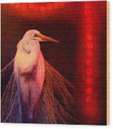 Rasberry Glow Wood Print