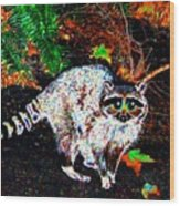 Rascally Raccoon Wood Print by Will Borden