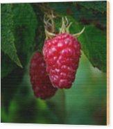 Raspberry 1 Wood Print