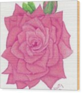 Raspberry Pink Wood Print