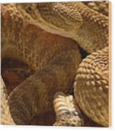 Rattlesnake And Rattle Wood Print