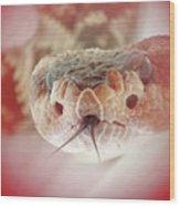 Rattlesnake Red Wood Print