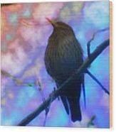 Raven In Spring Wood Print