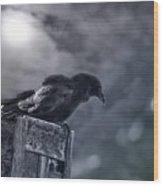 Raven Twilight Wood Print