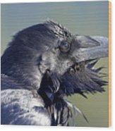 A Raven - Windblown Wood Print