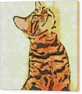 Ravi Series #7 Wood Print