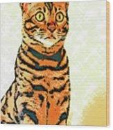 Ravi Series #8 Wood Print
