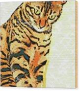 Ravi Series #3 Wood Print