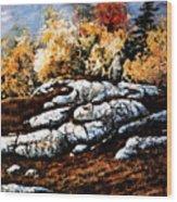 Raw North Wood Print
