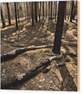 Raw Yosemite Wood Print