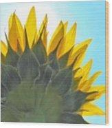 Ray Of Sunflower Wood Print