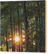 Rays Of Dawn Wood Print