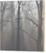 Rays Of Hope Wood Print by Bill Cannon