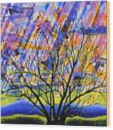 Rays Of Life Wood Print