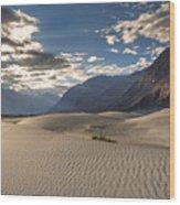 Rays On Dunes Wood Print