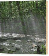 Rays Through The Trees Wood Print