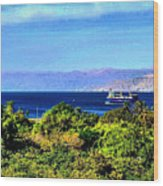 Rea Sea Aqaba Wood Print