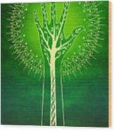 Reach Wood Print by Cristina McAllister