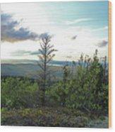 Reach To The Sky Wood Print