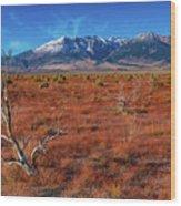 Read Fields Eastern Sierra Wood Print