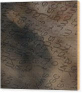 Reading Between The Lines Wood Print by Vicki Ferrari