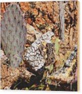 Real Cactus In An Actual Desert  Wood Print