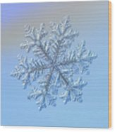 Real Snowflake - Hyperion Wood Print