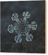 Real Snowflake - Ice Crown New Wood Print