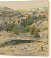 Realm Of Golden West Dakota Wood Print