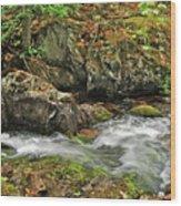 Reany Falls 4 Wood Print