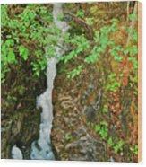 Reany Falls 4548 Wood Print