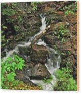 Reany Falls 5 Wood Print