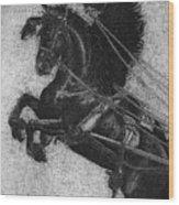 Rearing Horses Wood Print