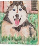 Rebel The Husky  Wood Print
