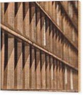 Receding Lines I Wood Print