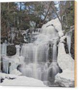 Receding Winter Ice At Ganoga Falls Wood Print