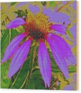 Recolored Echinacea Flower Wood Print